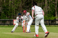 CRICKET: Old Buckenham v Sprowston