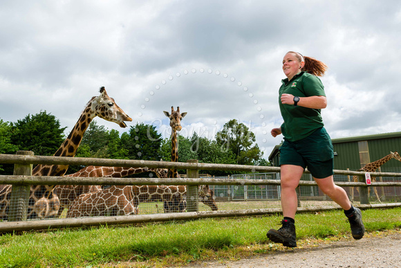 Banham Zoo- keeper Stacey Foreman has been raising money for the zoo by running 5km a day